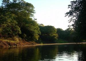 Fazenda 500,0 hectares - rincão de santana - são borja -