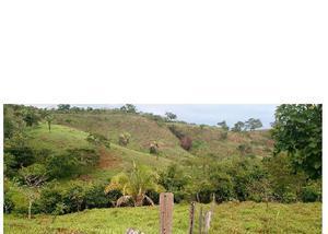 Fazenda de 22 alqueires para pecuária - em pires do rio go.