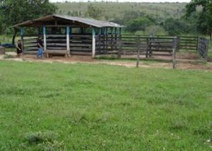Fazenda de 48,84 hectares localizada em curvelomg