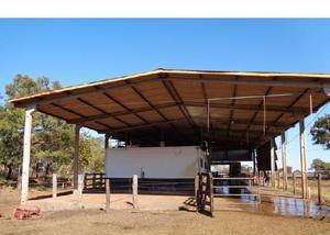 Fazenda produtora de leite,com 255 hectares em acorizal-mt