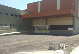 Galpão/depósito/armazém para alugar, 1240 m² por r$