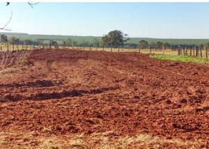 Oportunidade fazenda com 294 alq na região de bataguassu ms