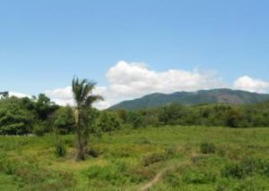 Oportunidade em agro-brasil cachoeiras de macacu-rj