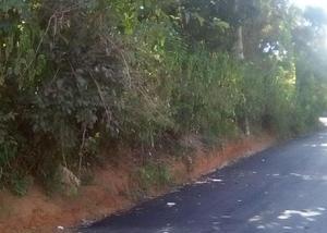 Sitio no sul de minas c acesso todo asfaltado e c escritura