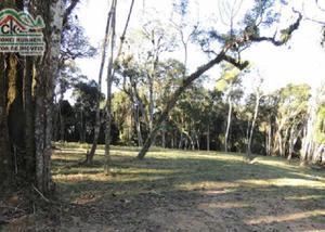 Terreno rural com 3 áreas prontas p construir, nascente e +