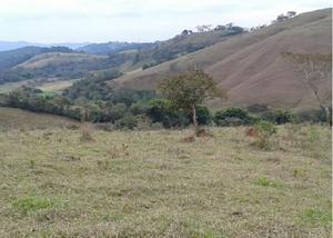 Terreno rural com 6 hectares proximo a rodovia.