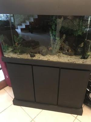 Vendo aquario com gabinete
