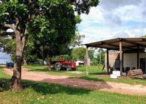 Excelente fazenda gado região de guaraí -tocantins