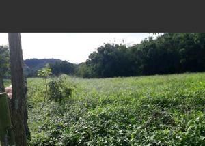 Sitio com 12 hectares com ótima topografia