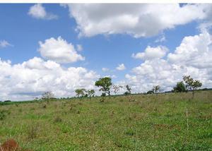 Vende se sitio de 17,42 hectares