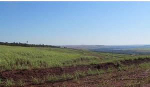 Fazenda agrícola - porecatu - pr (6133)