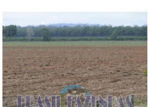 Fazenda em itamaraju. 9 mil hectares.