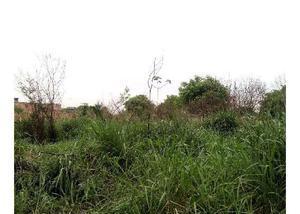Terreno 10 m x 17 m vila maria helena