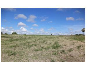Terreno plano 3 hectares de terra