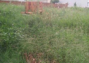 Vende terreno no jardim maria helena, nova odessa