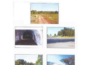 Rea de terra com 149,54 hectares em montenegro.