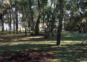 Lindíssima propriedade em guarapuava-pr de 34 hectares