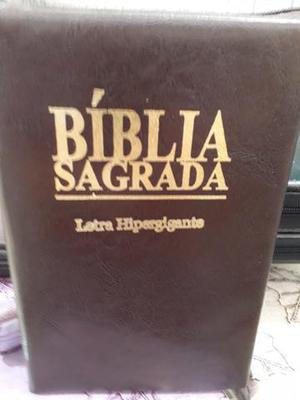 Kit 10 biblia sagrada letra hipergigante