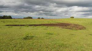 Fazenda/sítio à venda, 125000 m² por r$ 440.000
