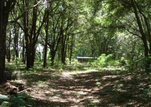 Bella plot 18.5 acres perto da cidade
