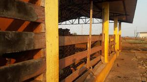 Fazenda localizada na ms