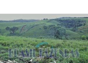 Fazenda em eunápolis a 85 km.433 ha