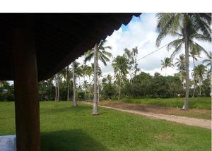 Lotes com 900 m2 financiados perto da praia de mangue seco