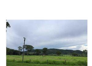 Fazenda de 164 alqueires pecuária padre bernardo go
