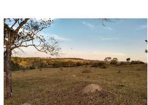 Fazenda de 19 alqueires pecuária região morrinhos go
