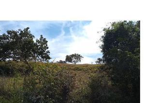 Fazenda de 39 alqueires pecuária região santa cruz de