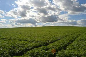Fazenda/sítio com 3 quartos à venda, 9680000 m² por r$
