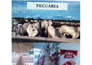 Vendo fazenda - lucro liquido r$ 120 milhões - 60.000 ha