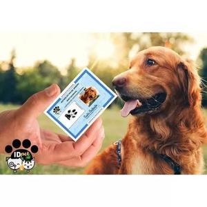 Carteirinha de identidade para cães, gatos, aves, cavalos..