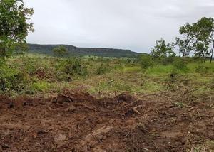 Oportunidade de fazenda com 1.500 hectares em campo verde mt