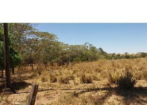 6 alq. exelente de água plana irrigação piracanjuba go