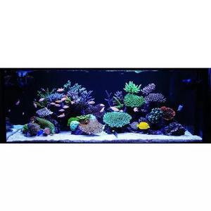 Kit lâmpada 80cm barra tubo led iluminação aquário