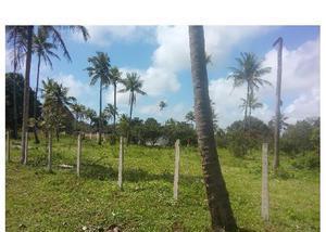 Terrenos em área nobre porto vasco estrada de mangue seco