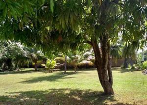 Ipioca -cond. sauaçuhy-casa linear 3 lotes prox a praia