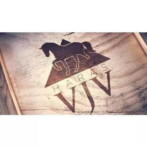 Criação de logotipo/logomarca para