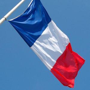 Traduções juramentadas e livres de francês em mg