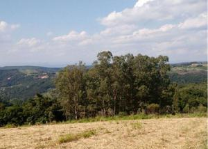 Sítio 6,1 hectares - lomba grande - novo hamburgo - rs