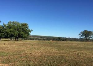 Oportunidade de fazenda com 6.000 hec região rondonópolis