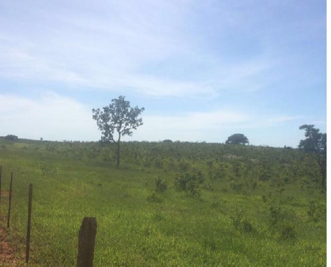 Fazenda com 2.550 hectares na região de alto taquari mt