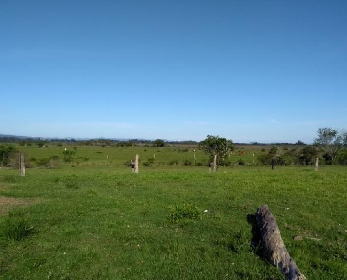 Sítio 5,0 hectares - passo grande - glorinha - rs