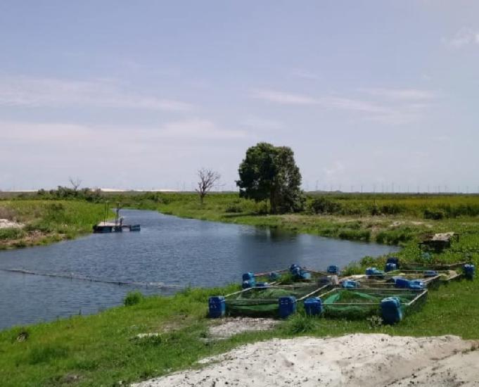 Fazenda com lagoa, rios e projeto de parque eólicos