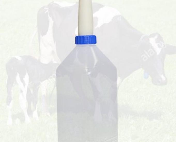 Vasilhames de leite