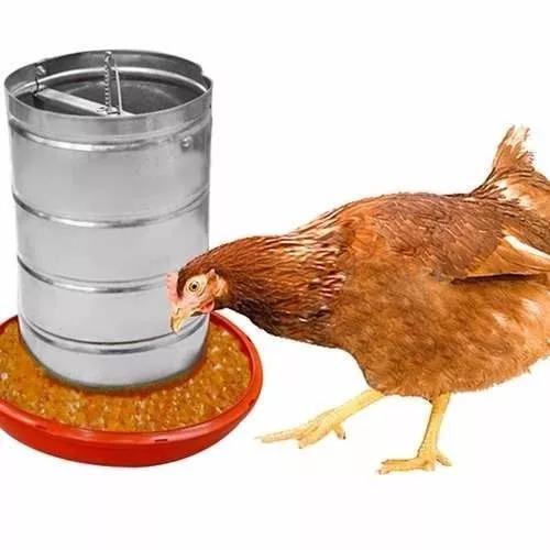 5 comedouros aves galinhas codornas frango pintinhos 5 kl