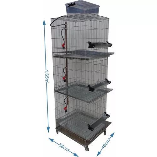Bateria de 3 gaiolas para galinha - chocmaster