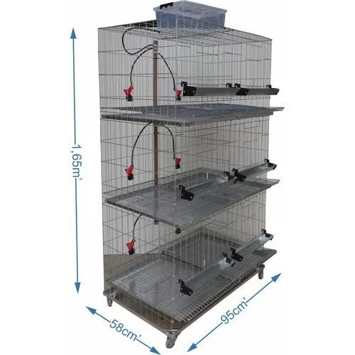 Bateria de 6 gaiolas para galinha - chocmaster