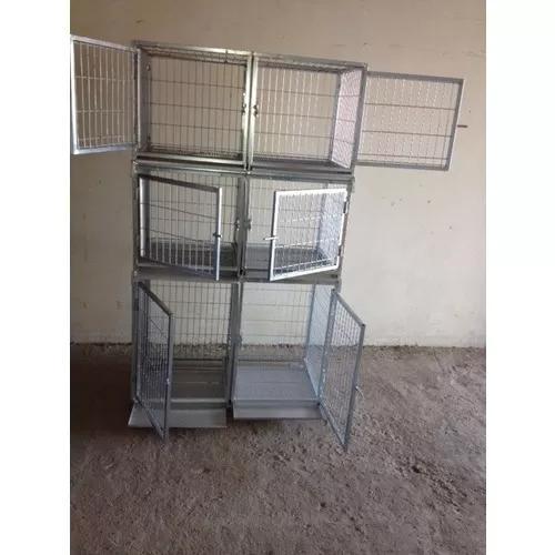 Canil pet jr 6 lugares pet-shop banho tosa cao gato coelho